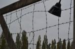 Dachau 03 221