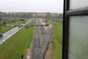 Auschwitz 14 3 267